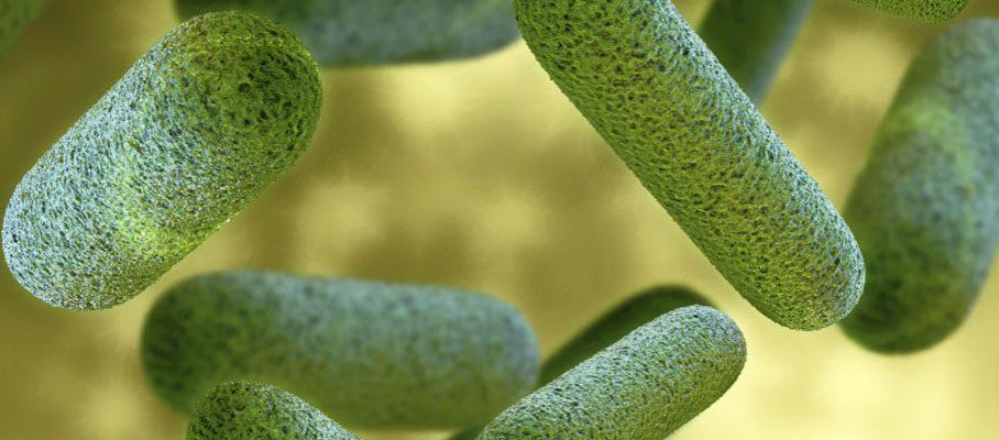 MyCrobz Bacteria Solutions logo